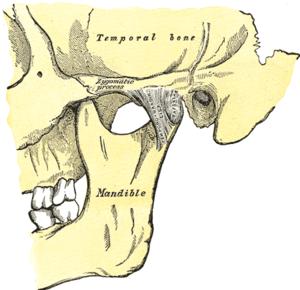 bệnh đau khớp thái dương hàm