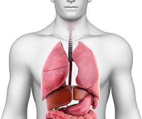 ung thư lá lách