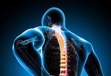 đau lưng dưới bên trái